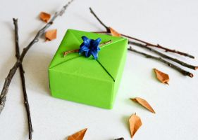 Bright Green Origami Gift Box by ReverseCascade