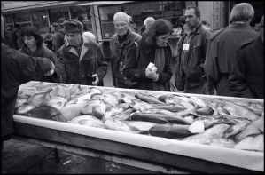 Sofia, Bulgaria, fresh fish by ESafian