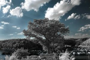 Lake Cumberland Infrared 3 by GothicAmethyst