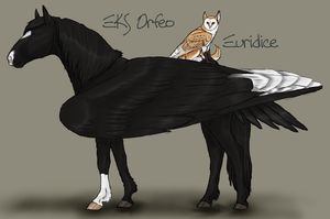 EKS Orfeo and Euridice by ReaWolf
