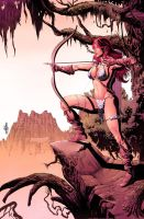 Red Sonja: Colored Art 02 by JacksonHerbert