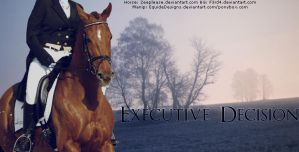 Executive Decision by EquideDesigns