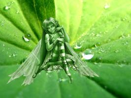 Fairy on a leaf 2 by adipotter