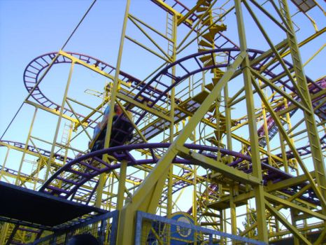 Wild mouse coaster by PupPupMagic