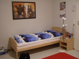 My new 'Dragon's Nest' pic 3, Bed by cynderfan35