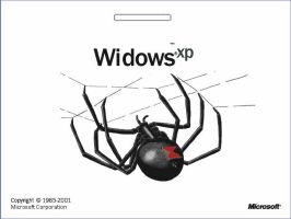 Widows XP by salinah20