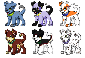 Puppy Adoptables 1 :OPEN: by russkiadopts