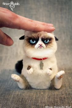 Grumpy Cat by Flicker-Dolls