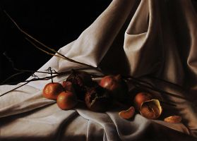 STILL LIFE 1 by SteASSENZIOPiccinini