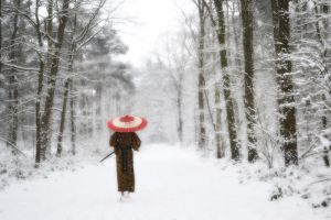 Samurai in the snow by chakotay02