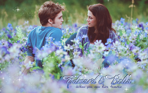 Edward and Bella Wallpaper by franzi303