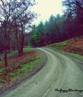 Road to nowhere. by TheZiggyStardrugs