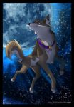 The Moon Hunt by SilverDeni