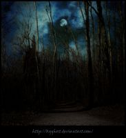 Premade Background_Path Under the Moon II by KYghost