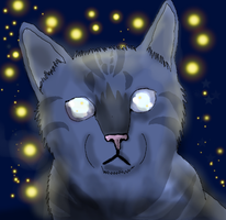 Jayfeather by Icefire11
