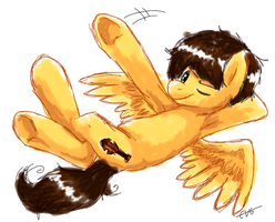 Wings over Equestria. by BritishStarr