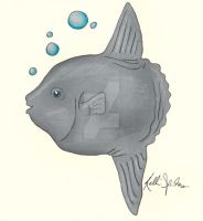 Ocean Sunfish by GreenChikin
