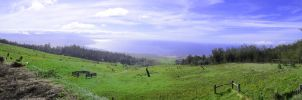 On Top Of Kohala by discoinferno84