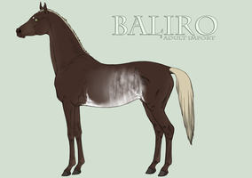Custom Baliro Import - bec51505 III by kalmanen