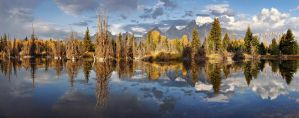 Silent Symmetry by ariseandrejoice