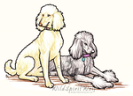 Andy And Claire Poodles by WildSpiritWolf