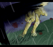 On a rainy hunt by blackunia