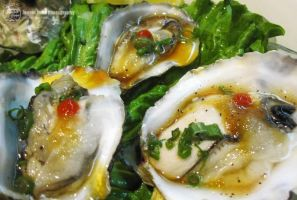 Fresh Oysters by sweetcivic