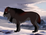 The Red Witch 26598 by TotemSpirit