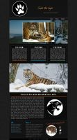 Save the tiger by FabyLeon