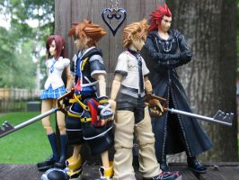 Kingdom of Hearts by Oxyrt