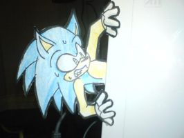 Sonic be eating of Wii xD by RitaCastle