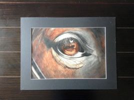 Horse Water color Painting for sale-OPEN- by Sno-berry