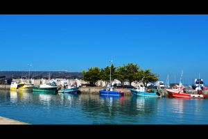Colorful Port by Mazarde