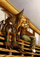 Evening chat by stucat