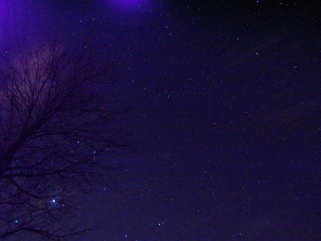 Night Skys And Stary Nights by BeautyInNaturePhotos