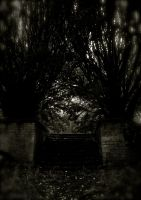 Haunted Memories I by FalseMaria