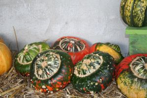 awesome pumpkins 3 by ingeline-art