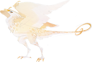 Feathered Wyvern by Sheylu