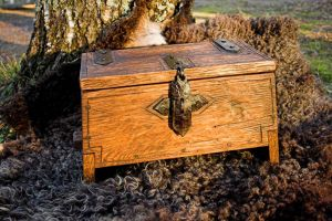Viking Chest by Nimpsu