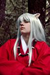 Inuyasha- Afternoon Nap by Anzai-D