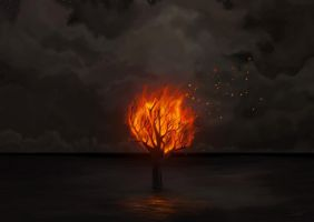 Burning tree in the ocean by iSkyloft