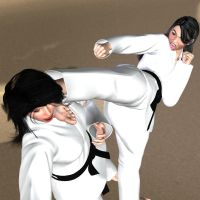 Kick in the face 3d hh by Soldier2000