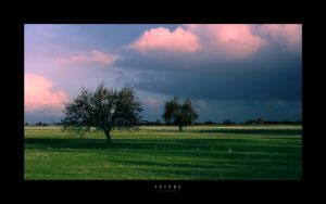 Escape by Gregoria