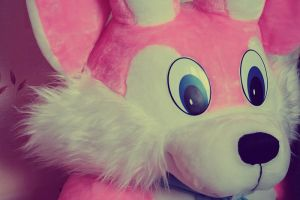 pink rabbit by the-wabbit