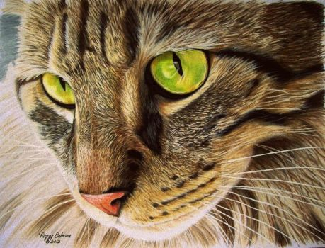 Green Eyed Tabby by anniecanjump