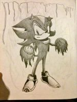 Shadow the Hedgehog by mrweirddude