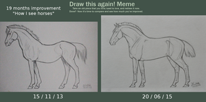 How I see horses - 19 months improvement by Salvada