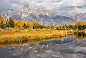 Schwabacher Reflections by papatheo
