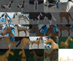 DoE Teaser : Equine Markings by ZombieKitteh