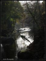 Afon Llugwy at Betws-Y-Coed by Arawn-Photography
